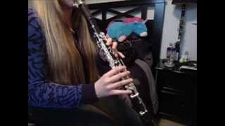 Fallout Boy- My Songs Know What You Did In The Dark (Clarinet Cover)