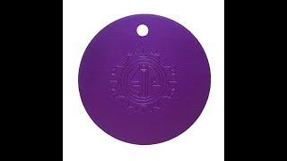 6  Cool Ways to Use a Tesla Purple Plate