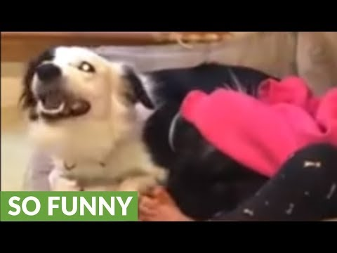 Little girl sweetly sings to her doggy