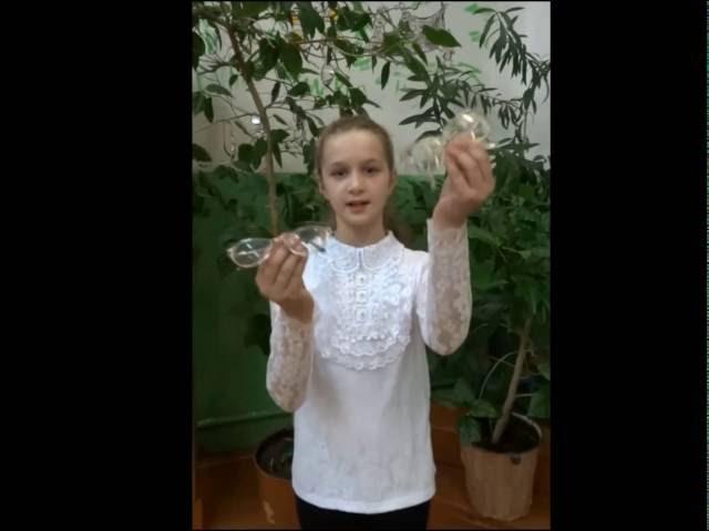Изображение предпросмотра прочтения – ДарьяПетрова читает произведение «Мартышка и очки» И.А.Крылова