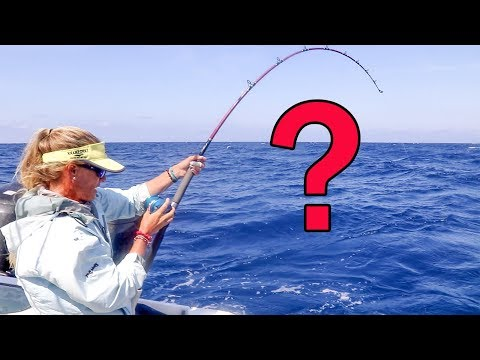 MONSTER Mistake on Deep Florida Wreck!