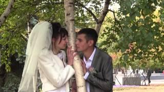 Алина и Дима - видеооператор на свадьбу в Кривом Роге, видеосъемка свадьбы Кривой Рог