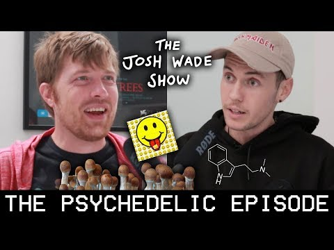 The PSYCHEDELIC Episode (Shane Mauss) - The Josh Wade Show #030