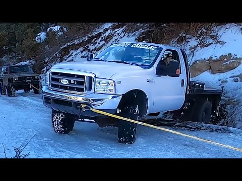 Lizzy's Friends Call For A Rescue...Ford Power Stroke