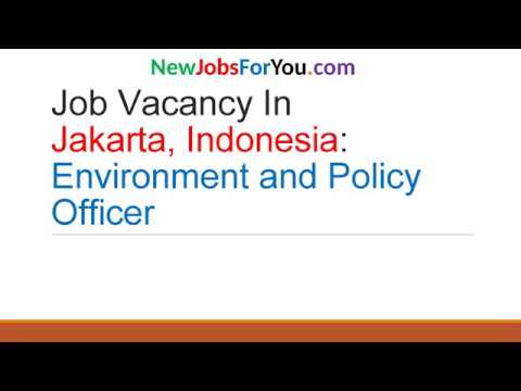 Job Vacancy in Jakarta, Indonesia: Environment and Policy Officer