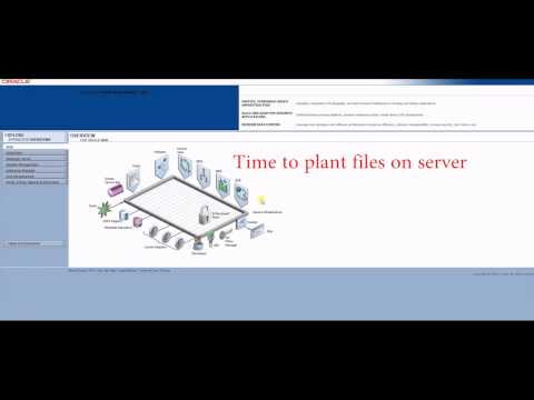 Hacking Oracle Forms and Reports 116