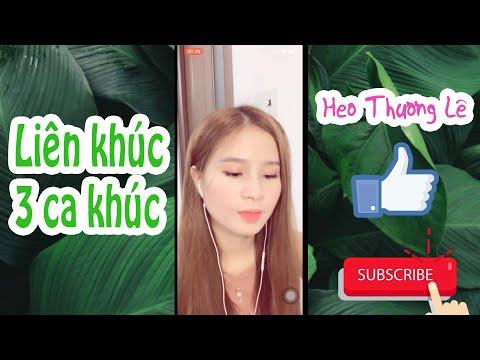 Liên Khúc 3 Ca Khúc - (Cover By Heo Thương Lê)