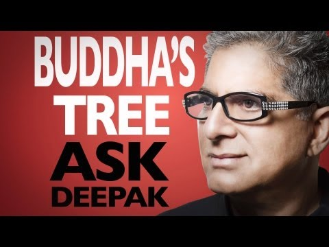 Why Did Buddha Get Enlightened Under The Tree? Ask Deepak Chopra!