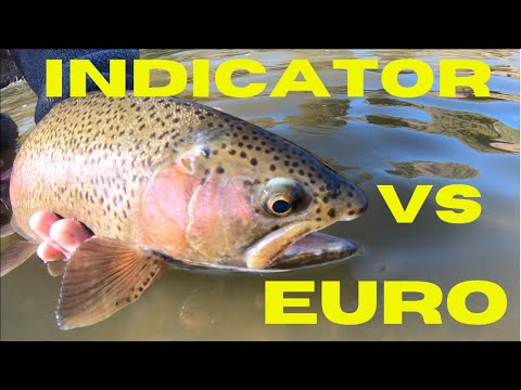 FLY FISHING CHALLENGE! (euro Nymphing Vs Indicator)
