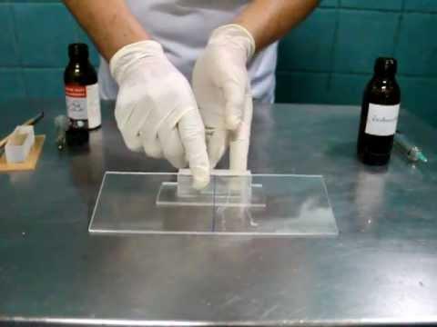 น้ำยาเชื่อมอะคริลิก Acrylicmate