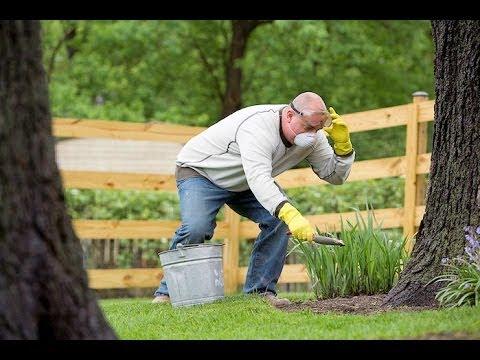 SLICE of Trivia: Dangerous Gardening - YouTube