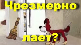 DOG / Что делать если собака чрезмерно лает(Что делать если собака чрезмерно лает Метод Пола Оуэнса. Воспитание без насилия., 2016-04-17T20:53:13.000Z)