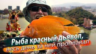 РЫБАЛКА В ЛОТОСАХ НА КАЯКЕ Лодочный рыболовный турнир Рыба красный дьявол