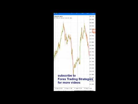 🔥😋NO LOSS Forex hedging strategy - Explained how to hedge your trades - forex trading strategies