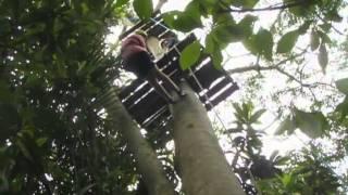 20110212 Dia pleno de Aventura - Arborismo