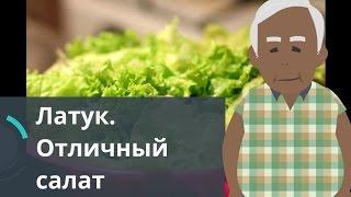 Латук. Отличный салат