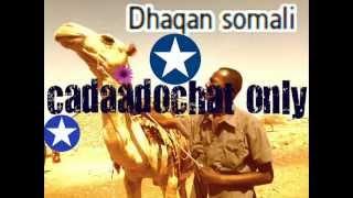 xasan & sahro the best song ee isla qadan kaban
