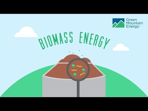 Renewable Energy 101: Biomass Electricity