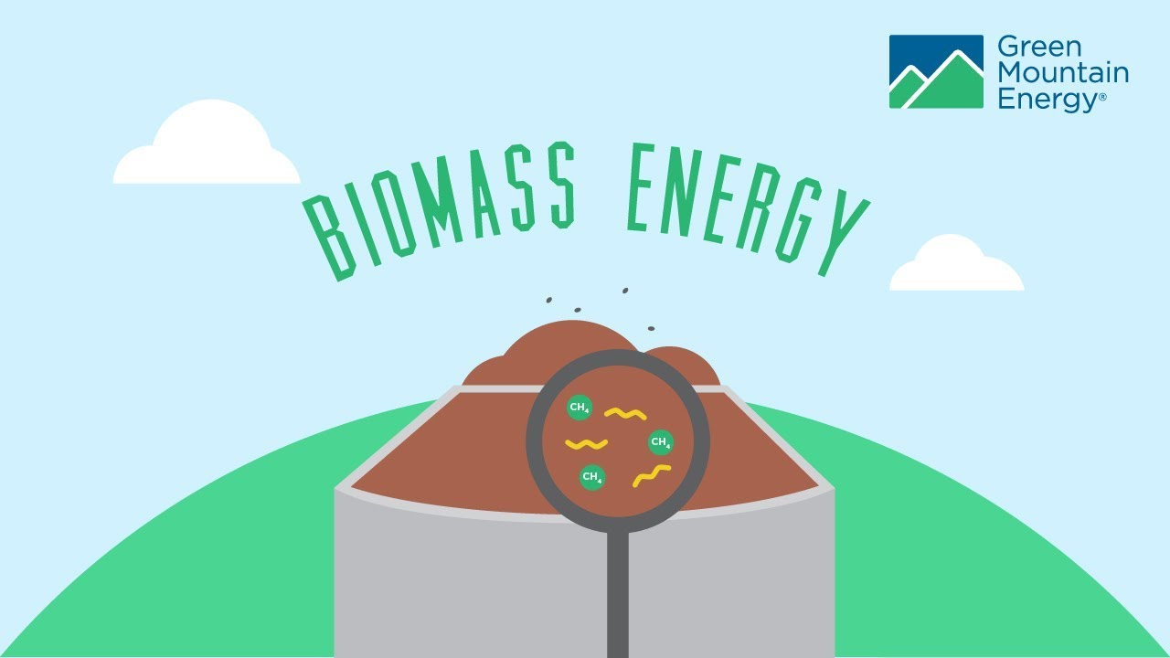 Renewable Energy 101 How Does Biomass Energy Work Youtube
