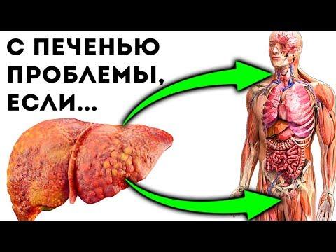 Как называется процесс разрушения белка