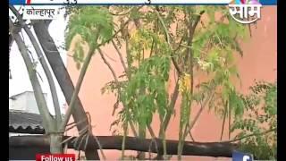 Terrace Farming by Mohite family of Kolhapur