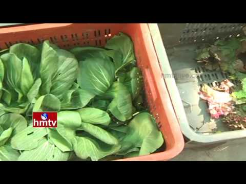 Agricultural Awareness Programmes   Natural Farming By Mahbubnagar Farmer   Nela Talli   HMTV