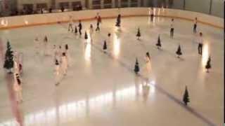 Новогодняя елка на льду