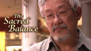 The Sacred Balance w/ David Suzuki - Trailer