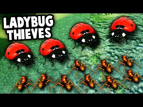 HUGE LADY BUGS vs ANT COLONY ARMY! (Empires of the Undergrowth Gameplay)