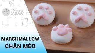 Cách làm kẹo Marshmallow chân mèo ngọt ngào cực yêu dành cho các bé   Vào bếp cùng Điện máy XANH