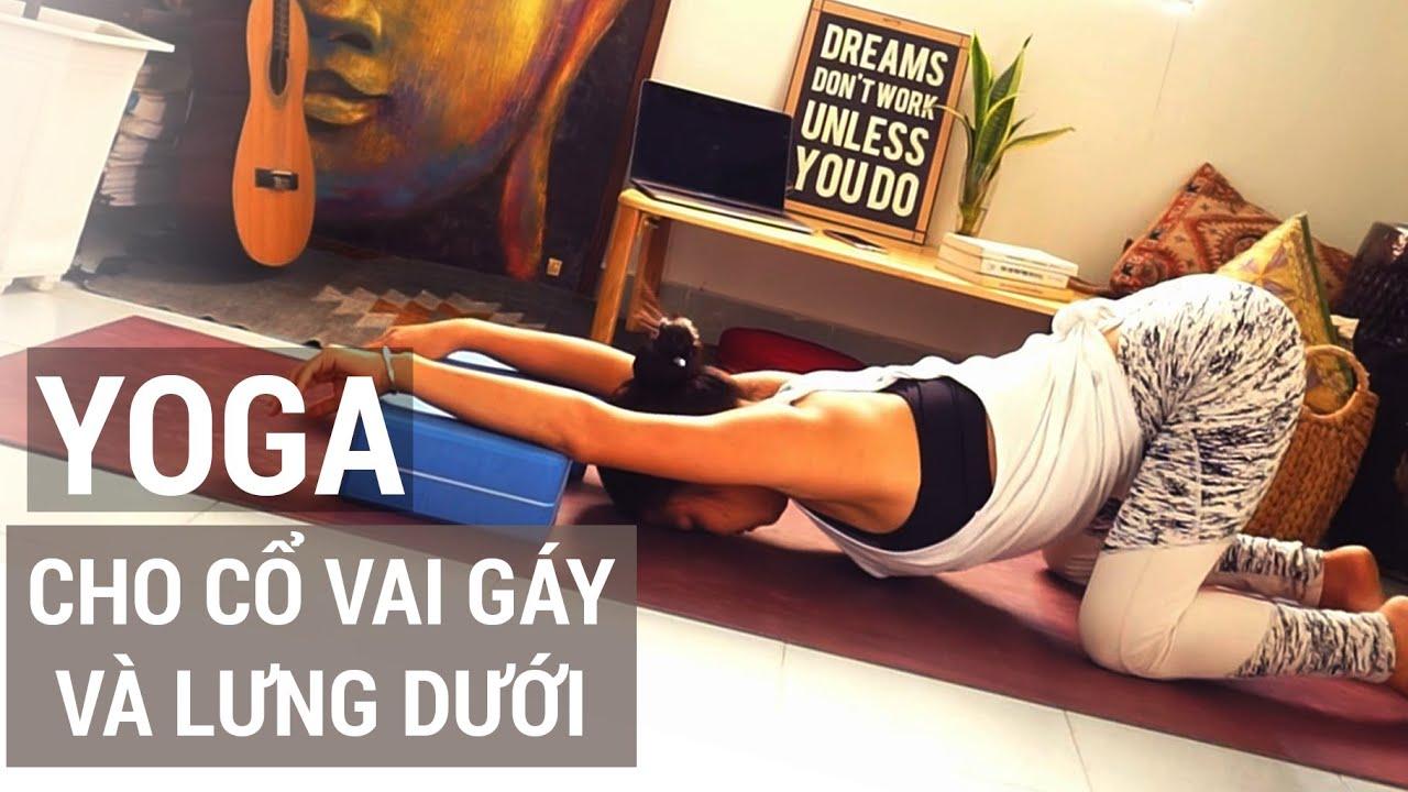 Yoga thư giãn CỔ VAI GÁY và LƯNG DƯỚI cho người ngồi nhiều hoặc đau nhức mỏi lưng | Yogi Travel