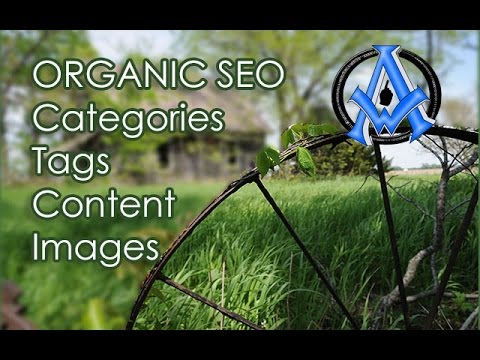 ORGANIC SEARCH ENGINE OPTIMIZATION TECHNIQUES TUTORIAL