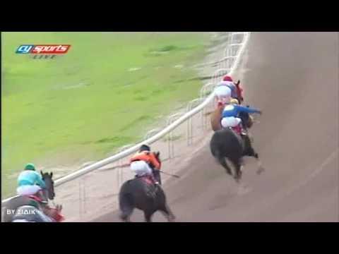 1η ιπποδρομία -ΦΥΤΑΚΗΣ ΣΤΑΡ-1500 μέτρα (9η) 29-01-17 (BY ΣΙΔΙΚ)