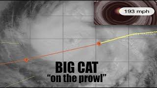 Hurricane IRMA -