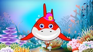 Baby Shark Dance Sing and Dance! Animal Songs Songs for Children