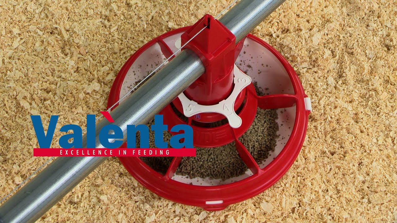 Equipment for floor keeping of broilers – Peja International