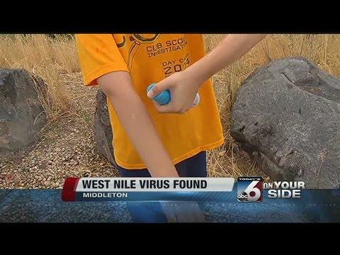 West Nile Virus found
