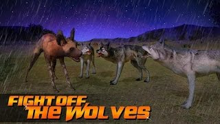 Wild Dog Simulator 3D - Android Gameplay HD