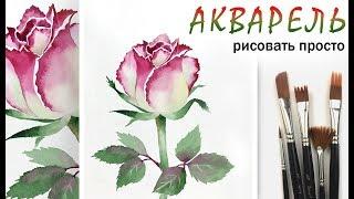 Как нарисовать цветок РОЗА!  АКВАРЕЛЬ! Урок для начинающих. Живопись акварелью на бумаге просто
