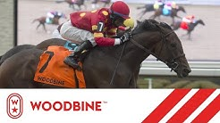 2019 Grey Stakes (Grade III): Woodbine, October 27, 2019 - Race 8