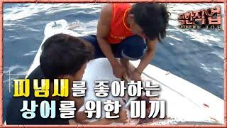 극한직업 - Extreme JOB_인도네시아 상어잡이 - 1부_#002