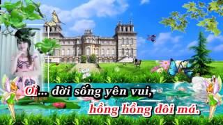 Tình Bắc Duyên Nam {Karaoke HD}