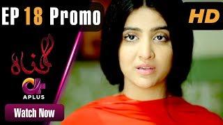 Gunnah - Episode 18 Promo | Aplus Dramas | Sara Elahi, Shamoon Abbasi, Asad Malik | Pakistani Drama