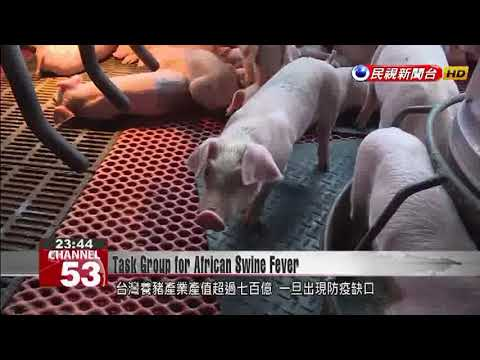 Executive Yuan to form emergency center for African swine fever