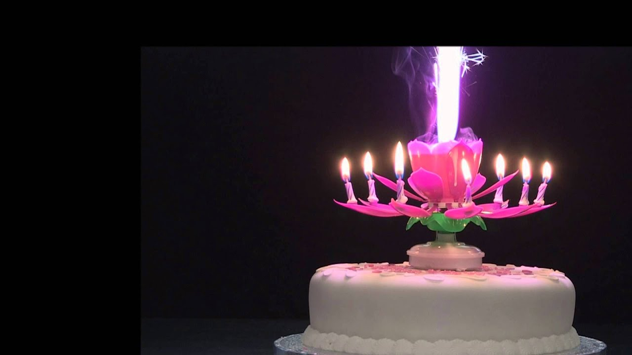 Rotating Musical Flower Candle Youtube