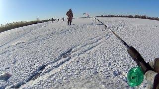 Они ломают крючки...! Ловля судака зимой на балансир. Зимняя рыбалка в Астрахани.