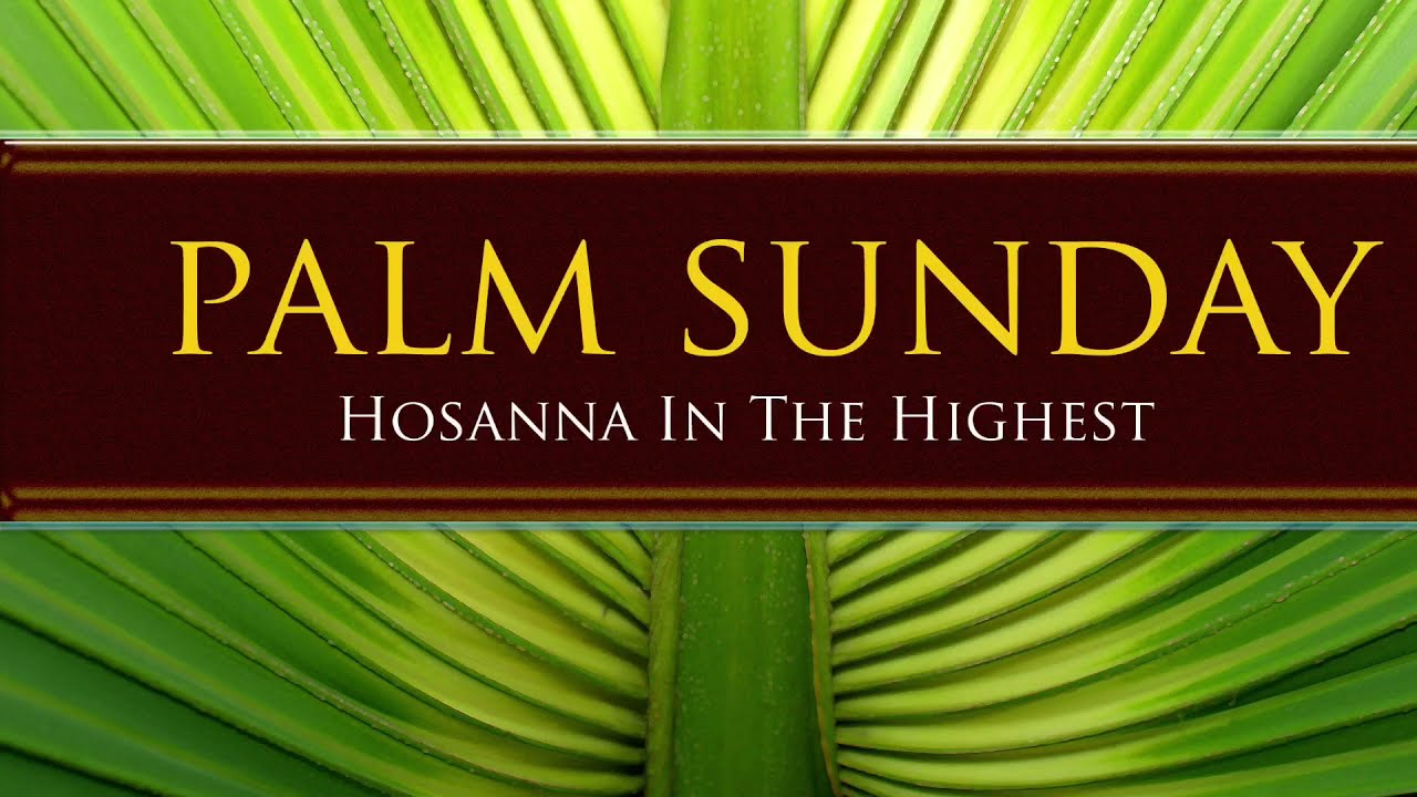 Palm Sunday Homily (Year B) 28 March 2021 - YouTube