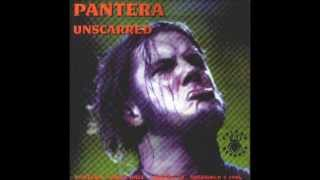 16)PANTERA-Cowboys From Hell(Cat Scratch Fever)- Rare 96'