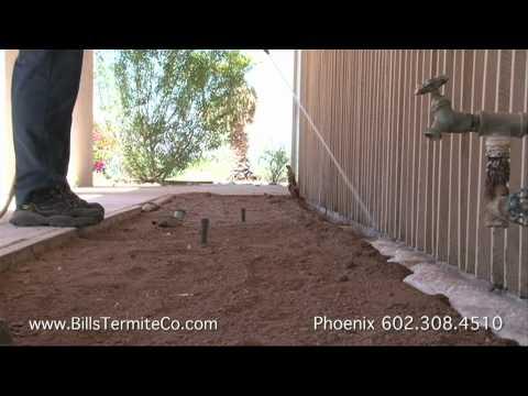 Phoenix Control Termite Az