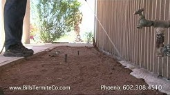 Termite Treatment Phoenix Az Bills Pest Termite Control